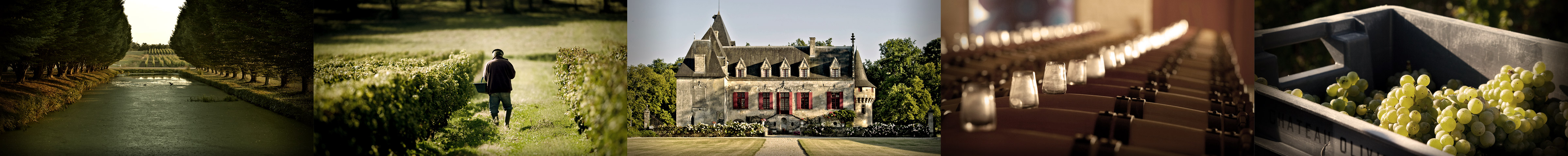photo chateau olivier grand cru classe 1989